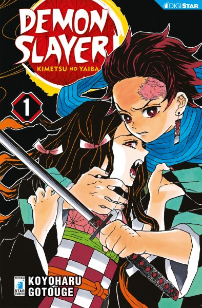 Demon Slayer – Kimetsu no yaiba 01